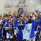 Desempenho no Brasileirão dos campeões da Copa do ...