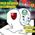 Cheiro verde? Memes ironizam Palmeiras e Flamengo após ...