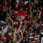 Quais são as maiores torcidas do Brasil? Veja o novo ranking