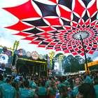 'Carnaval na Cidade' em SP deve agradar fãs do axé ao funk