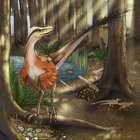 Descoberto dinossauro carnívoro com penas no sudoeste ...