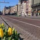 """isolamento seletivo' da Holanda pode ser de alto risco"