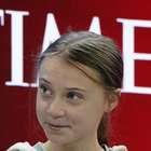 """""""Estude economia depois conversamos"""", diz secretário a Greta"""