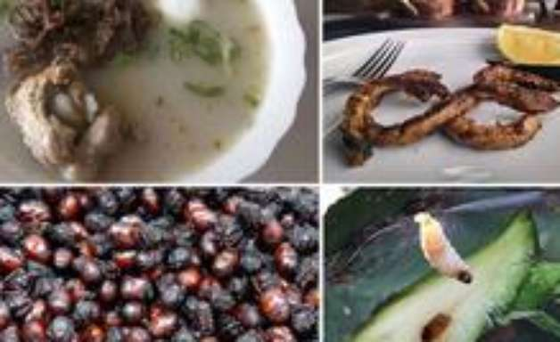 Larva de inseto? 6 pratos bem exóticos da América Latina