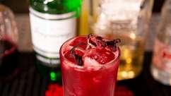 Como fazer o Red Collins, drinque com gim e hibisco