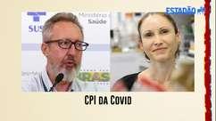 CPI da Covid ouve os cientistas Natalia Pasternak e Claudio Maierovitch