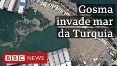 O que é a gosma marinha que faz estragos na costa da Turquia