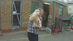 Cadela reencontra dona após 'sequestro'