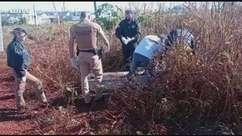Corpo de homem é encontrado em matagal em Toledo