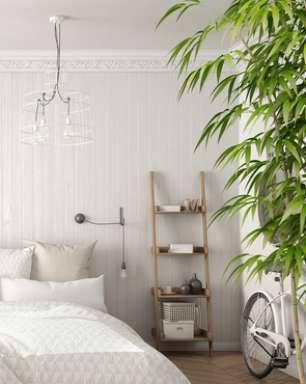 Melhore a energia e a saúde de sua casa e dos ambientes