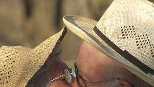 Mais de 50% dos homens acima dos 70 têm vida sexual ativa