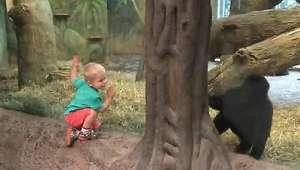 El gorila y el niño jugando al escondite enamoran a Facebook