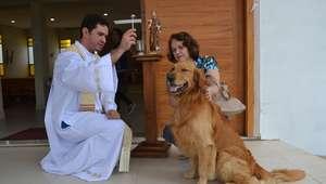 Pets recebem bênção especial no dia do santo protetor