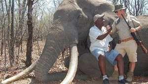 Un cazador mata a uno de los elefantes más grandes de África