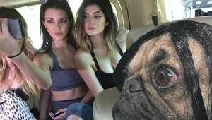 Kim Kardashian tiene un nuevo imitador: Doug the Pug