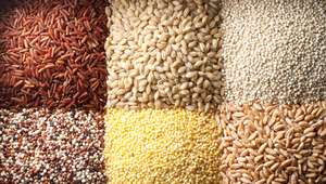 Quinoa, amaranto y trigo; los granos perfectos para el ...