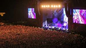 Rhinobird: App chilena para ver shows y partidos desde ...