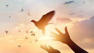 O espírito só vai aonde lhe convém; entenda!