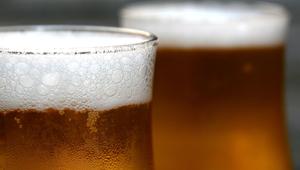 Como o aquecimento global pode levar à falta de cerveja ...