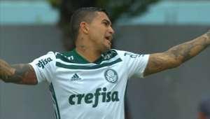 Palmeiras só empata com Paraná e desperdiça chance