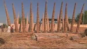 Pântanos perdidos do Éden iraquiano são reconstruídos