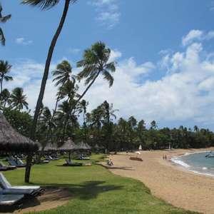 Praia do Forte reúne tranquilidade e belezas naturais na ...
