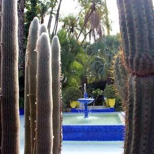 Jardim com restos mortais de Yves Saint Laurent dá ...