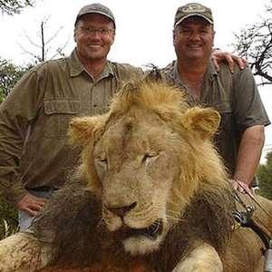 Hombre que mató a león Cecil, libre de cargos
