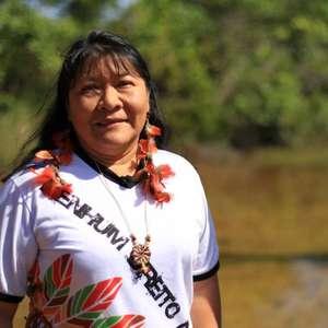 """""""Sou resultado do movimento indígena"""", diz Joênia Wapichana"""