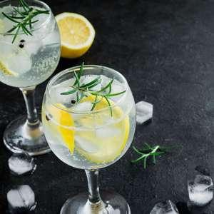 Gin tônica perfeita: veja as dicas e a receita fácil e ...