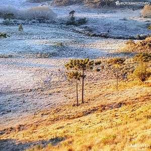 Sul do Brasil ainda tem muito frio e geada nesta quinta