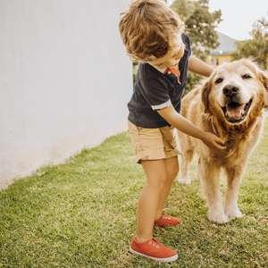 Feng Shui: outubro traz boas energias com crianças e animais