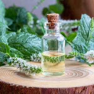 Como usar óleos essenciais no verão