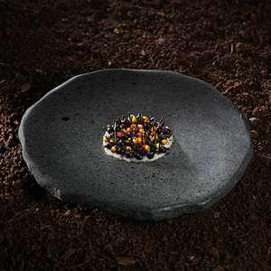 Melhor restaurante do Chile serve terra, flores e raízes