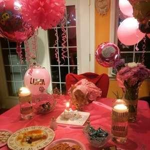Gatinha ganha festa de debutante para celebrar 15 anos