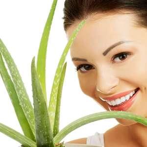Estes são os benefícios da Aloe Vera para seu sorriso