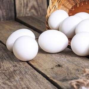 Dieta com ovo pode ajudar crianças a serem altas e fortes