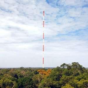 Como a poluição em Manaus tem afetado chuvas e ...