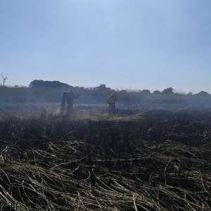 Apesar do isolamento, número de queimadas mais que dobra este ano em SP
