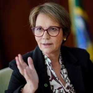 Ministra da Agricultura espera estabilidade nos recursos do Plano Safra 2020/21