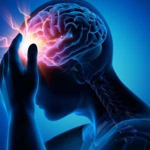 Jornada on-line sobre epilepsia trará experts para 14 dias de debates