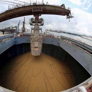 Exportação de soja do Brasil deve recuar para 10,8 mi t em junho, diz Anec
