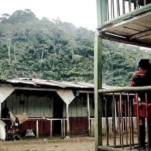 Estupro coletivo de adolescente indígena por soldados choca Colômbia