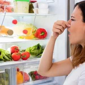 Mau cheiro na geladeira? Saiba como eliminá-lo com ingredientes naturais