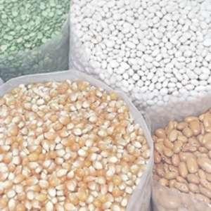 Excesso de umidade interfere no armazenamento de grãos