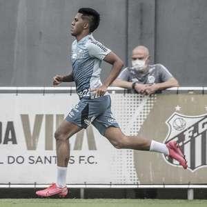 Ivonei afirma que Jesualdo tem testado jovens do Santos ...