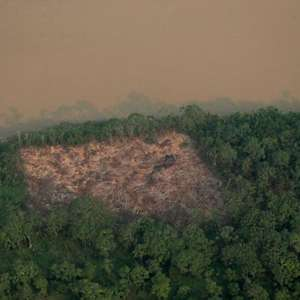 Governo vai proibir queimada na Amazônia por quatro meses