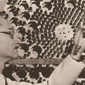 Como Sabin foi colaborar na erradicação da pólio no ...