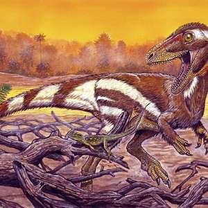 Pesquisadores apresentam fóssil de dinossauro encontrado ...