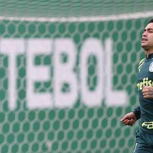 Dudu, do Palmeiras, deve viajar na próxima semana para o ...